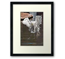 Houston, We Have Touch Down in 3, 2, 1..... Framed Print
