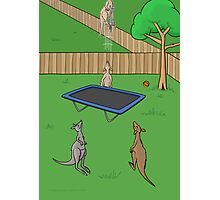 Kangaroo Trampoline Bounce Photographic Print