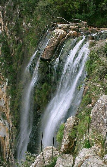 Minyon Falls ... by gail woodbury