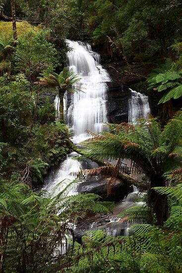 """""""Rainforest Cascade"""" by jonxiv"""