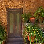 Green door - Montsalvat by Hans Kawitzki
