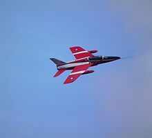 Folland Gnat by Andy Jordan
