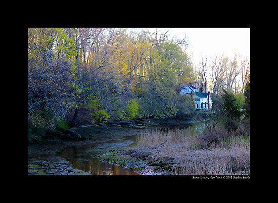 Evening At Mill Creek - Stony Brook, New York  by © Sophie W. Smith