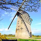 Bidston Windmill (Colour) by DavidWHughes