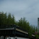 High Line, New York City's Elevated Park and Garden, Built on An Abandoned Freight Trestle by lenspiro