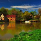 Sturminster Newton Mill England by delros