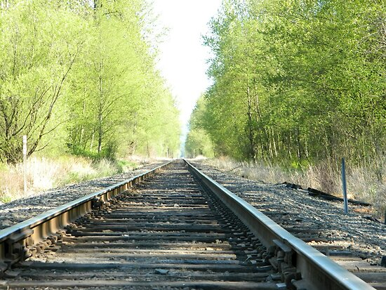 Train Tracks by kchase