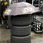 Keeping Dry at Talladega by Bill Gamblin