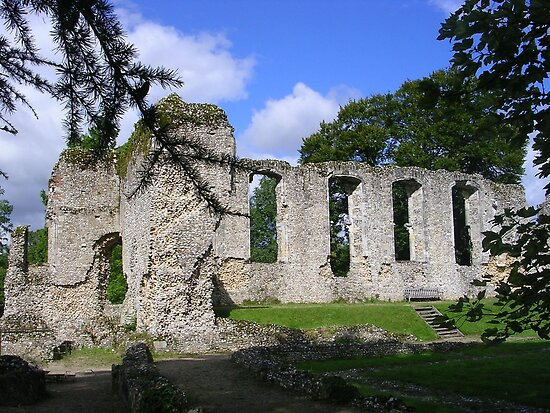 Palace Ruins at Bishops Waltham by lezvee