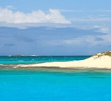 Tropical Island Panoramic by Roupen  Baker