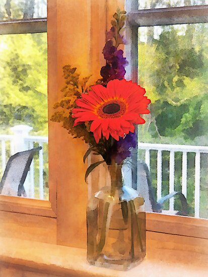 Gerbera Daisy by Kitchen Window by Susan Savad