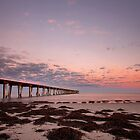 Largs Bay Pier by MarkCooperPhoto