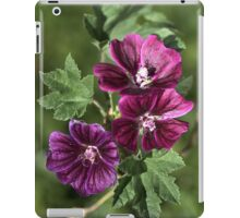 Rich Palette  iPad Case/Skin