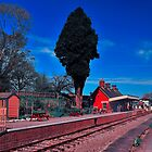Shillingstone Station Dorset by delros