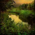 """""""Evening Brook"""" by peaky40"""