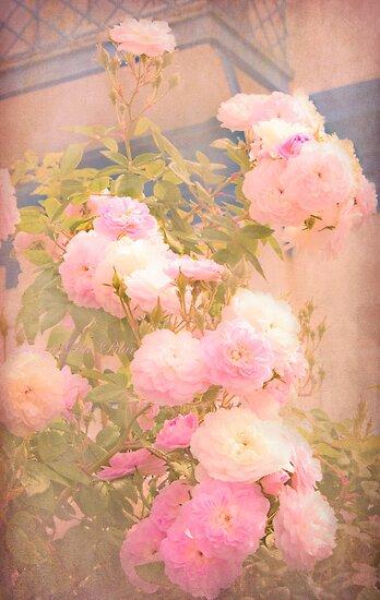 rose garden by terezadelpilar~ art & architecture