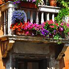 Venice Window by Thomas Barker