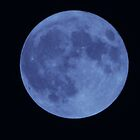 Blue Moon by K L Roberts