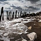 Spurn Head Beach by Theresa Elvin