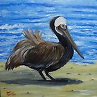 Brown Pelican on Datona Beach FLorida by towncrier
