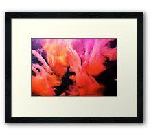 Pink Jellyfish Framed Print