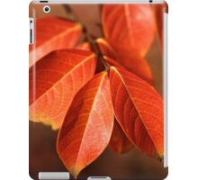 Autumn Richness iPad Case/Skin