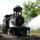 Early 1900's Steam Engine by kevint