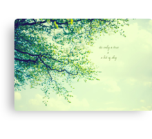 Its Only a Tree & A Bit of Sky Canvas Print