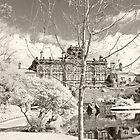 Biddulph Grange Hall by Mikhail31