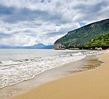 Beautiful island beach on sunny day in Sardinia by Prashant Agrawal