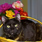Cami in a Basket by John Butler