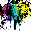 Rainbow Bull Elephant by pjwuebker