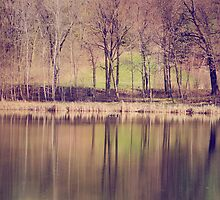 Spring Reflected by KBritt