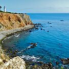 Point Vicente Lighthouse by Joni  Rae