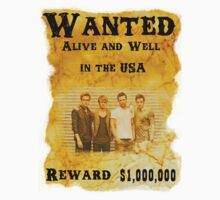 McFly Wanted in the USA by McFlyIllinois