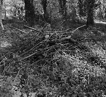 Pile of Sticks B&W by Artberry