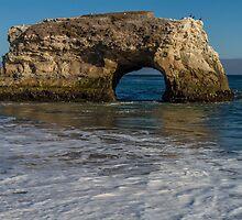 Natural Bridges at Santa Cruz by Richard Thelen