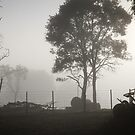 Foggy Morning - Westaway by pennyswork
