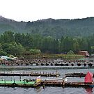 Hakone Jetty by Emily McAuliffe