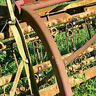 Rusted Farm Relic by K L Roberts