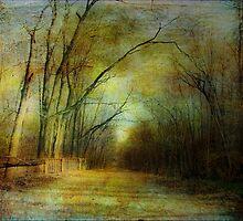 Choose A Path by Susan Werby