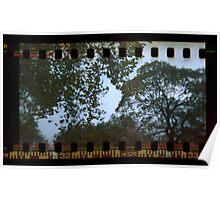 Holga Sprockets Trees and Sky Poster