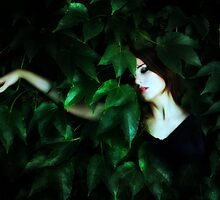 Leaves 8610 by fotowagner