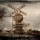 Vintage Country Railway Crossing by Kerry  Hill
