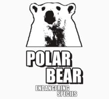 Polar Bear - Endangering Species by ricardovgg-br