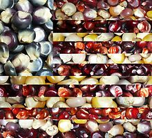 """American Maize"" Flag Collage by Muninn"