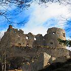 Ehrenberg Castle Ruins by M-EK