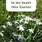 Easter Greetings Cards by Katherine T Owen, Author
