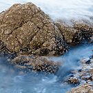 Sea Rock by sdimartino