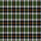 02336 Tarrant County, Texas District Tartan Fabric Print Iphone Case by Detnecs2013